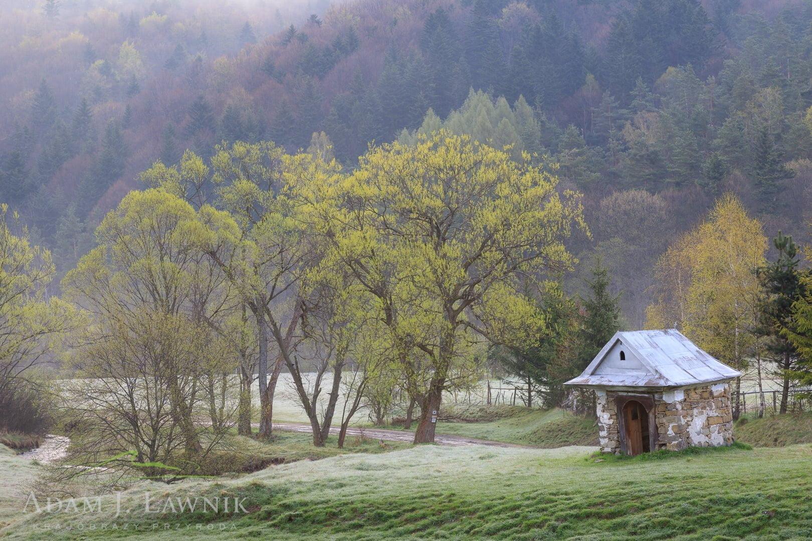 Kapliczka we wsi Czarne, Beskid Niski