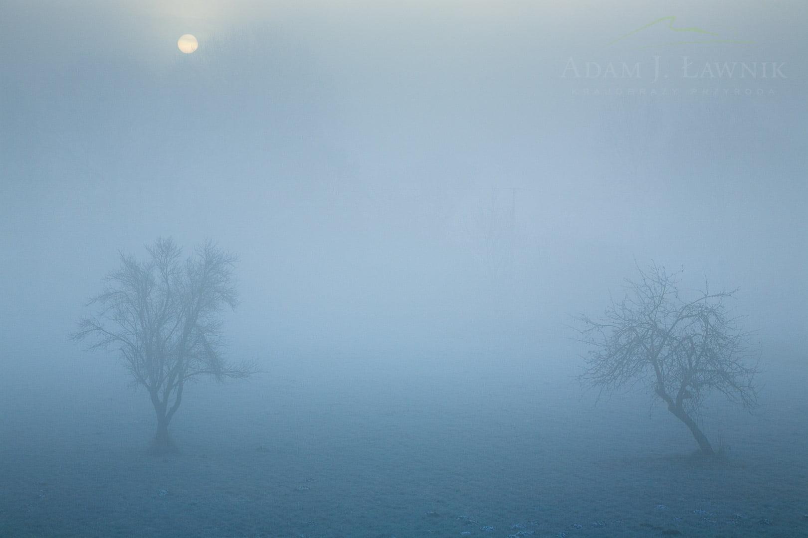 Middle Vistula Valley, Poland 0812-01085C