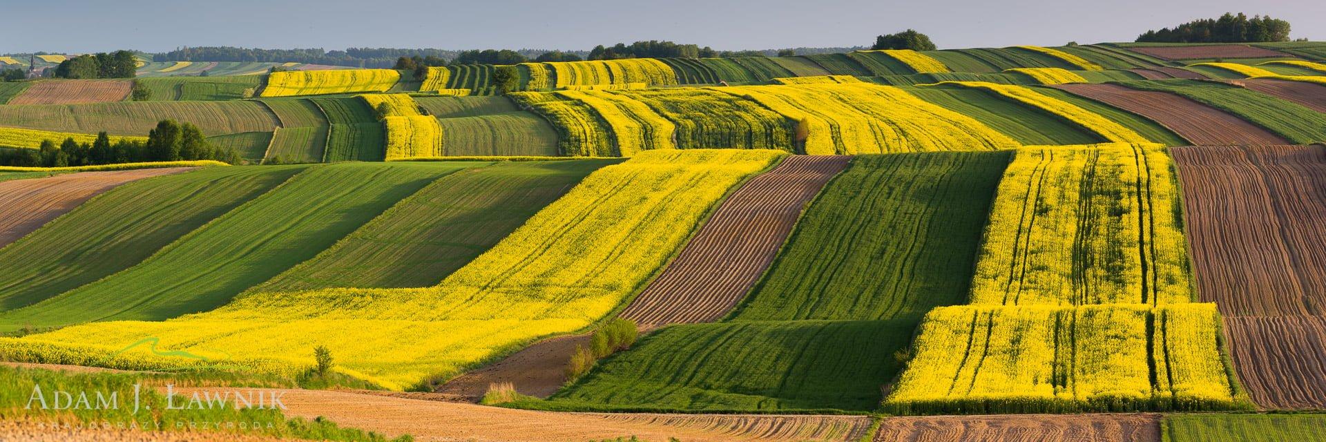 Roztocze, Poland 1505-00089C