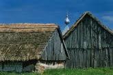 Suwałki Region, Poland 0505-02229P