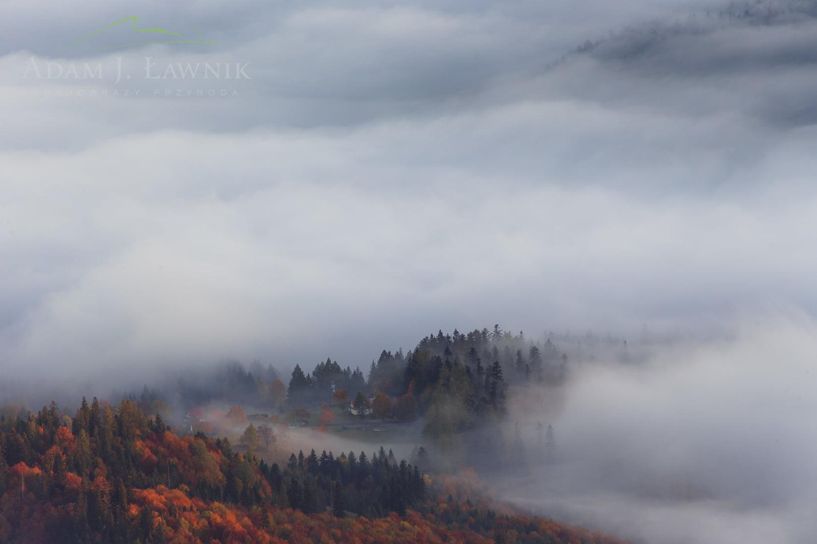 Widok z Babiej Góry na gęstą poranną mgłę