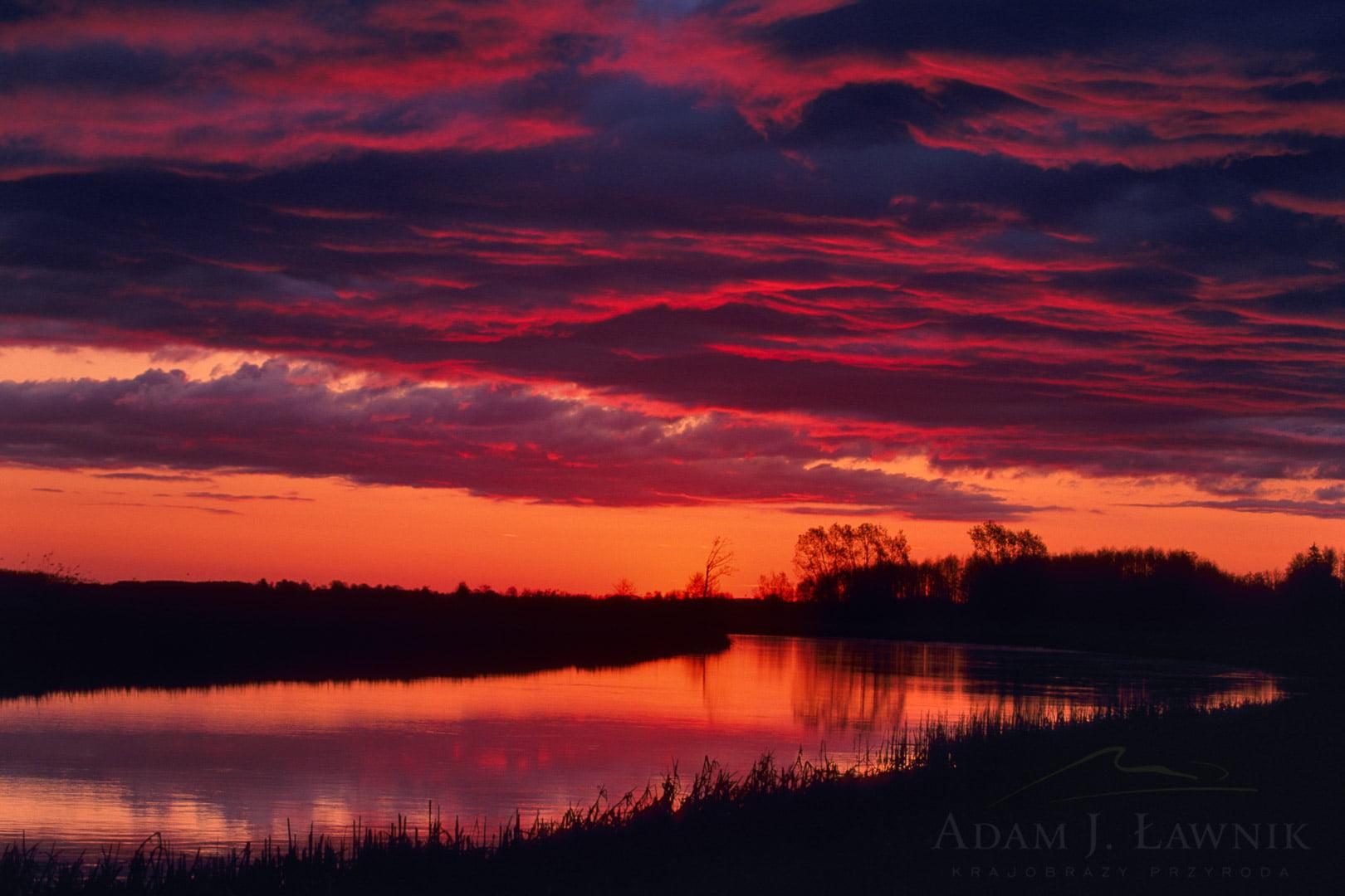 Wschód słońca w Biebrzańskim Parku Narodowym