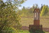 Stara kapliczka w Biebrzańskim Parku Narodowym