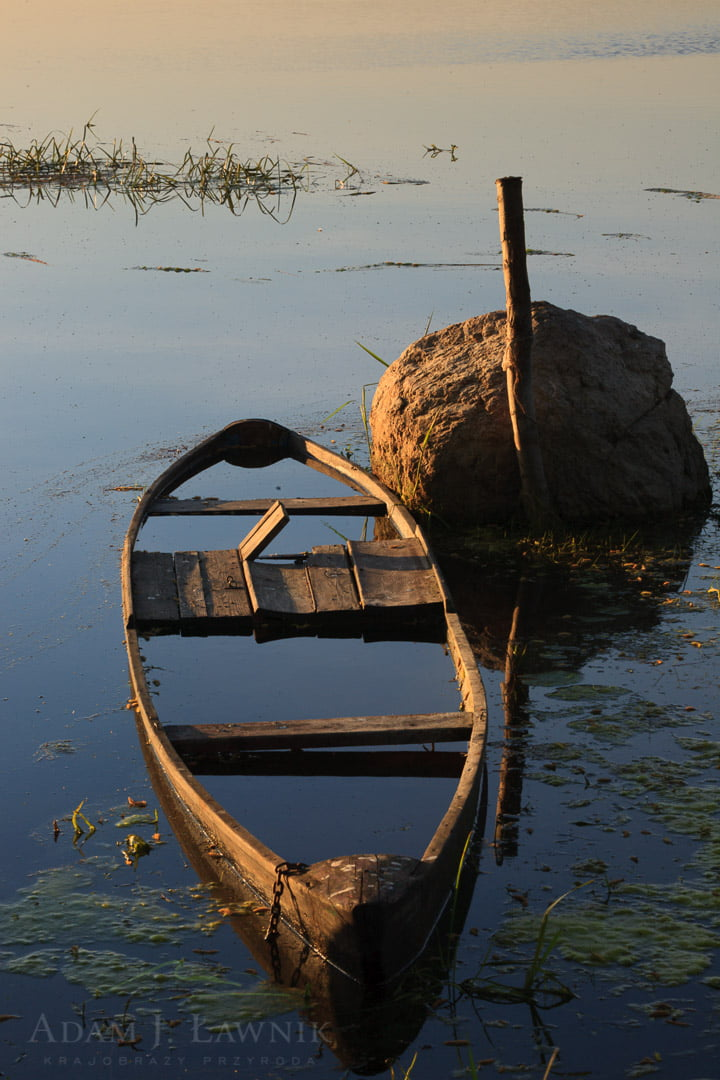 Łódka pychówka