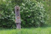 Kapliczka kłodowa w Biebrzańskim Parku Narodowym