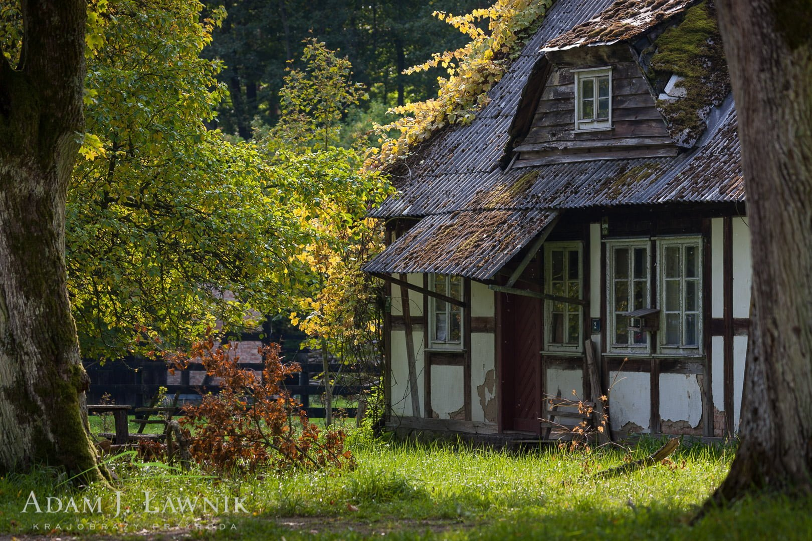 Drawa National Park, Poland 0809-00855C