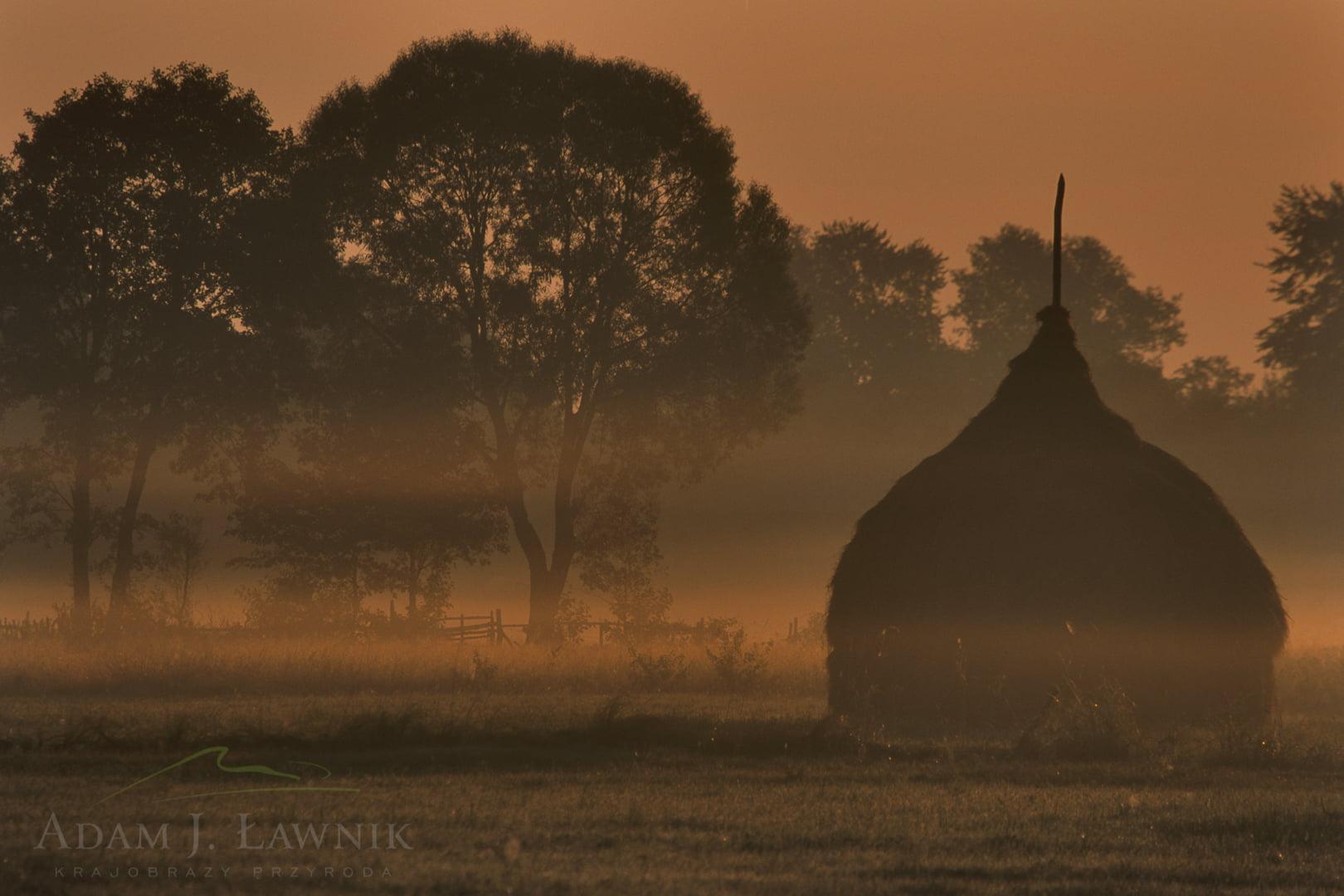 Tradycyjne stogi siana w Kampinoskim Parku Narodowym