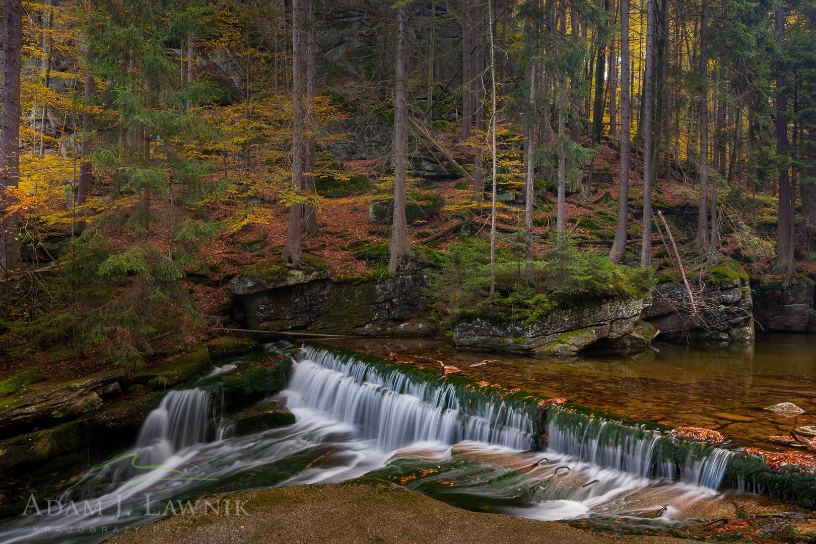 Karkonosze National Park, Poland 1110-02439C