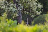 Nieznajowa w Magurskim Parku Narodowym