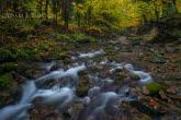 Potok Kłopotnica w Magurskim Parku Narodowym