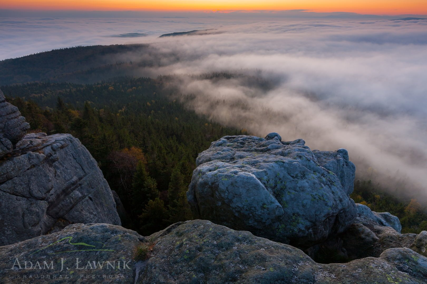 Stołowe Mountains National Park, Poland 1110-02203C