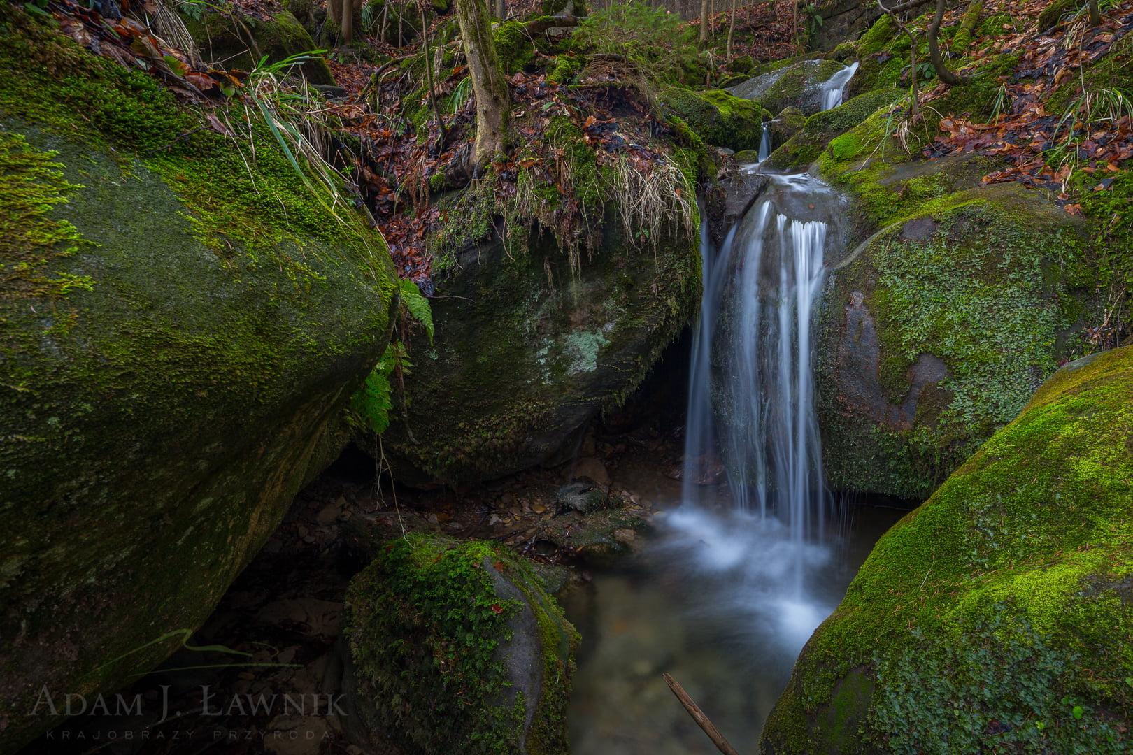 Stołowe Mountains National Park, Poland 1602-00018C
