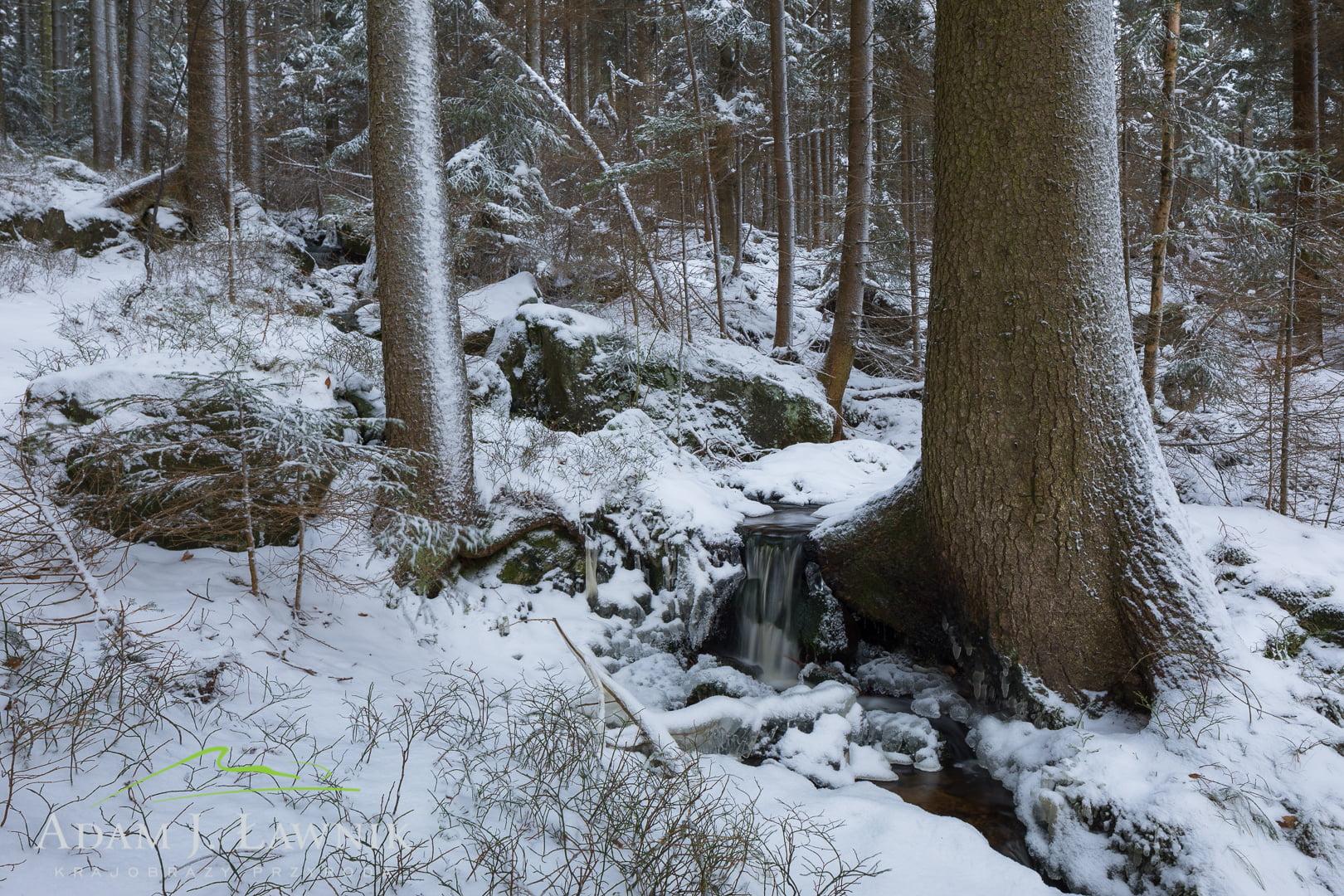 Potok Tyrnklawa w Parku Narodowym Gór Stołowych