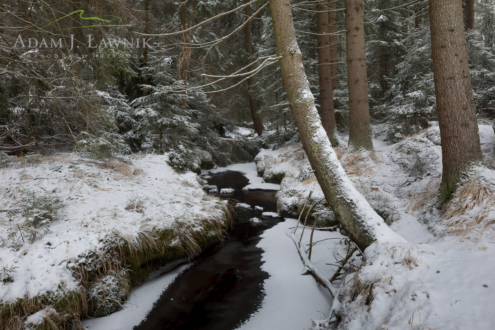 Stołowe Mountains National Park, Poland 1801-00025C