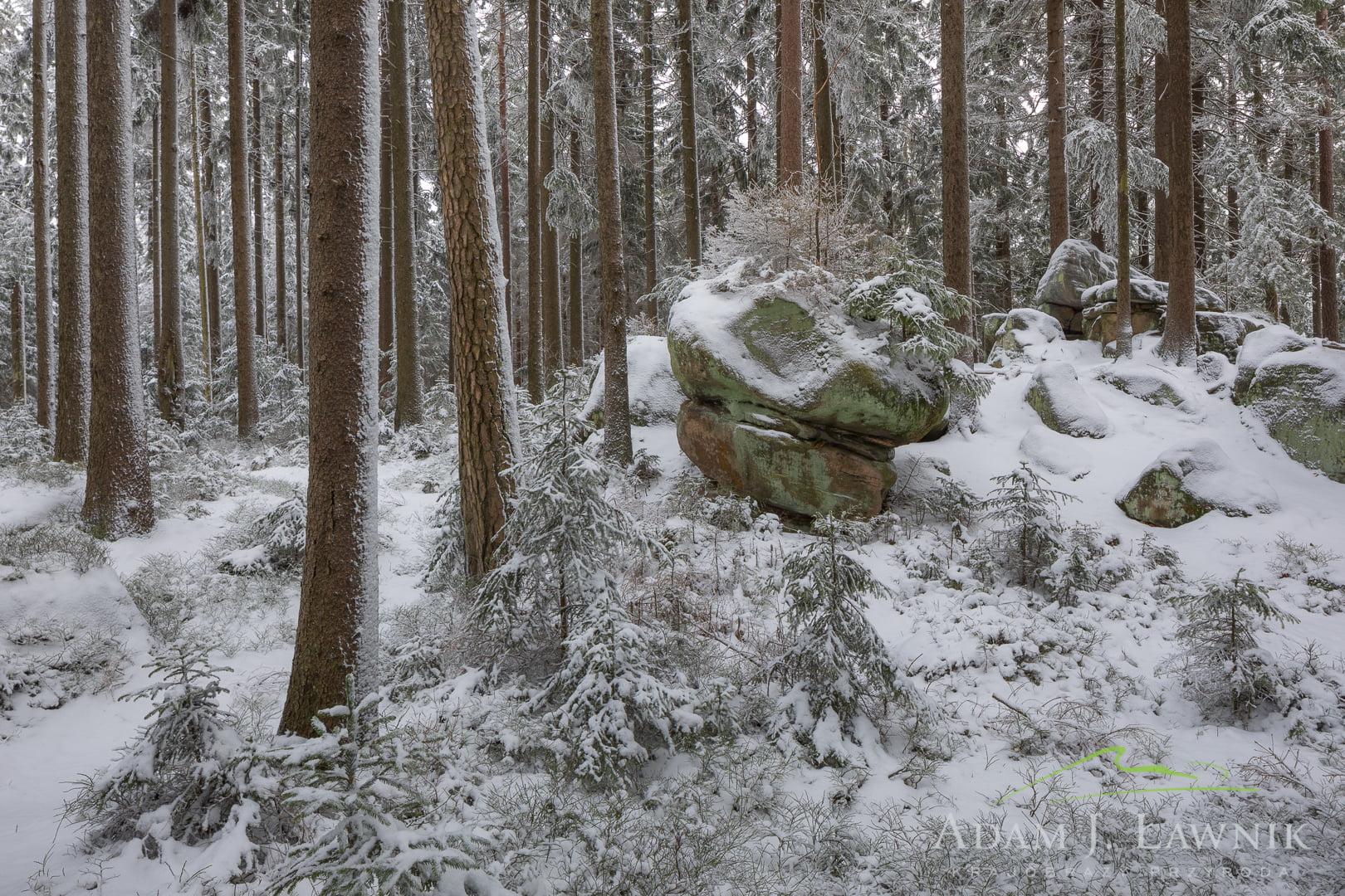 Stołowe Mountains National Park, Poland 1801-00029C