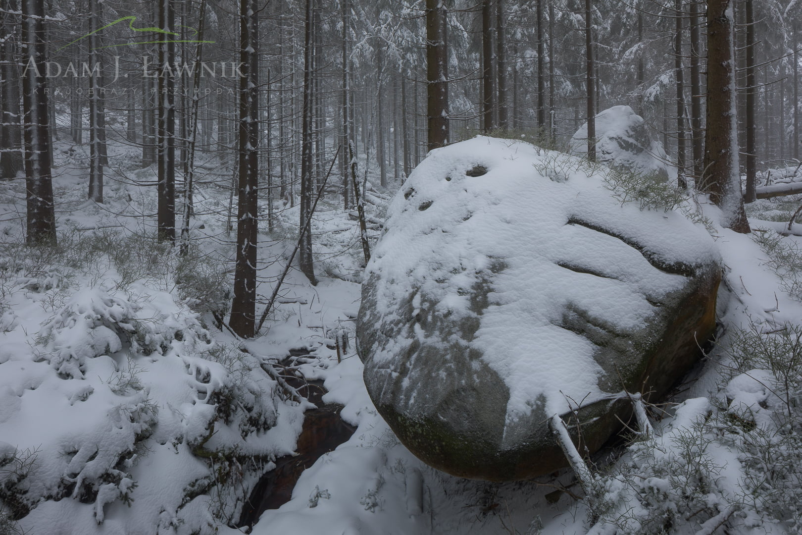 Stołowe Mountains National Park, Poland 1801-00033C
