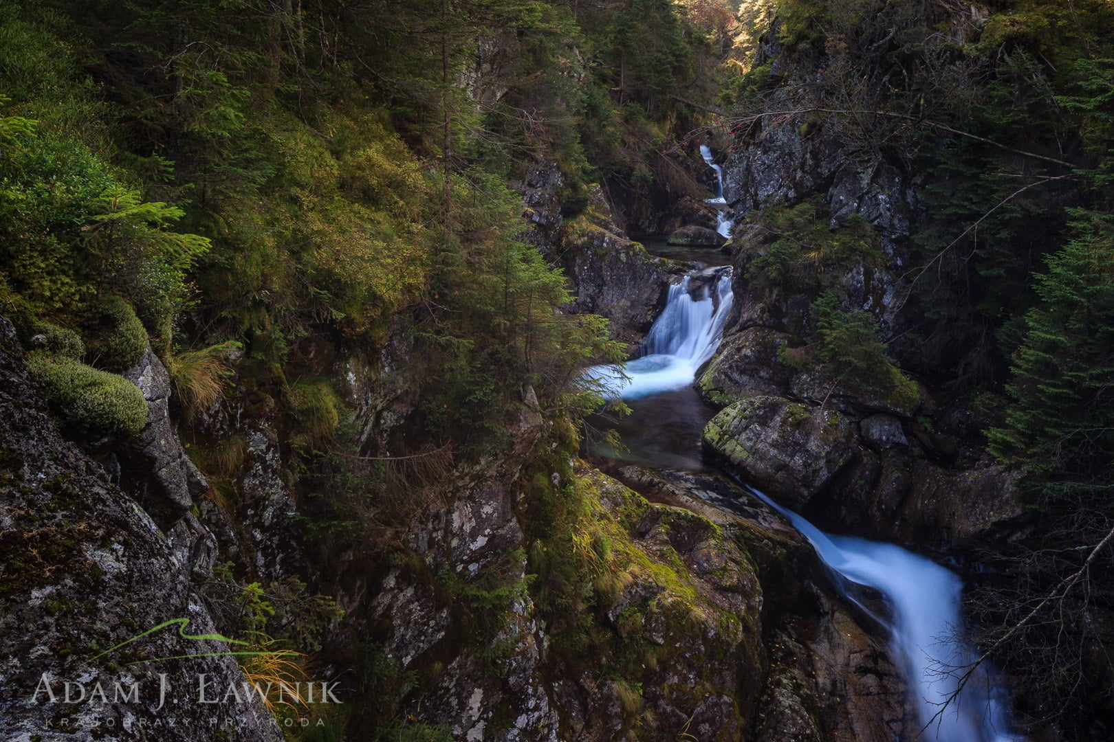 Tatra National Park, Poland 1310-01295C