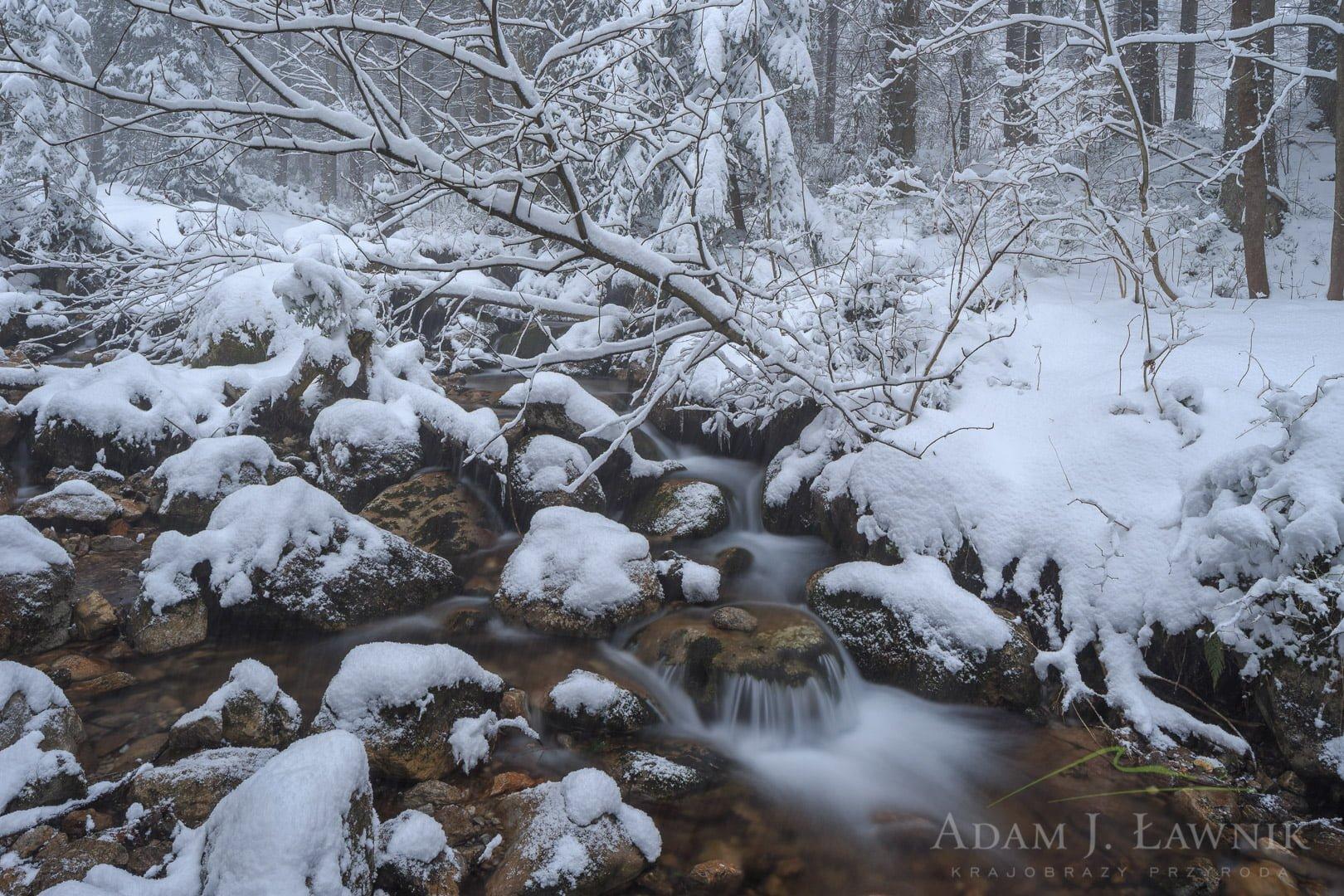 Tatra National Park, Poland 1602-00058C