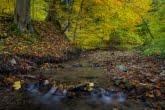 Turnica National Park, Poland 1510-01340C