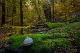 Turnica National Park, Poland 1510-01350C