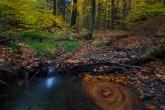 Turnica National Park, Poland 1510-01362C