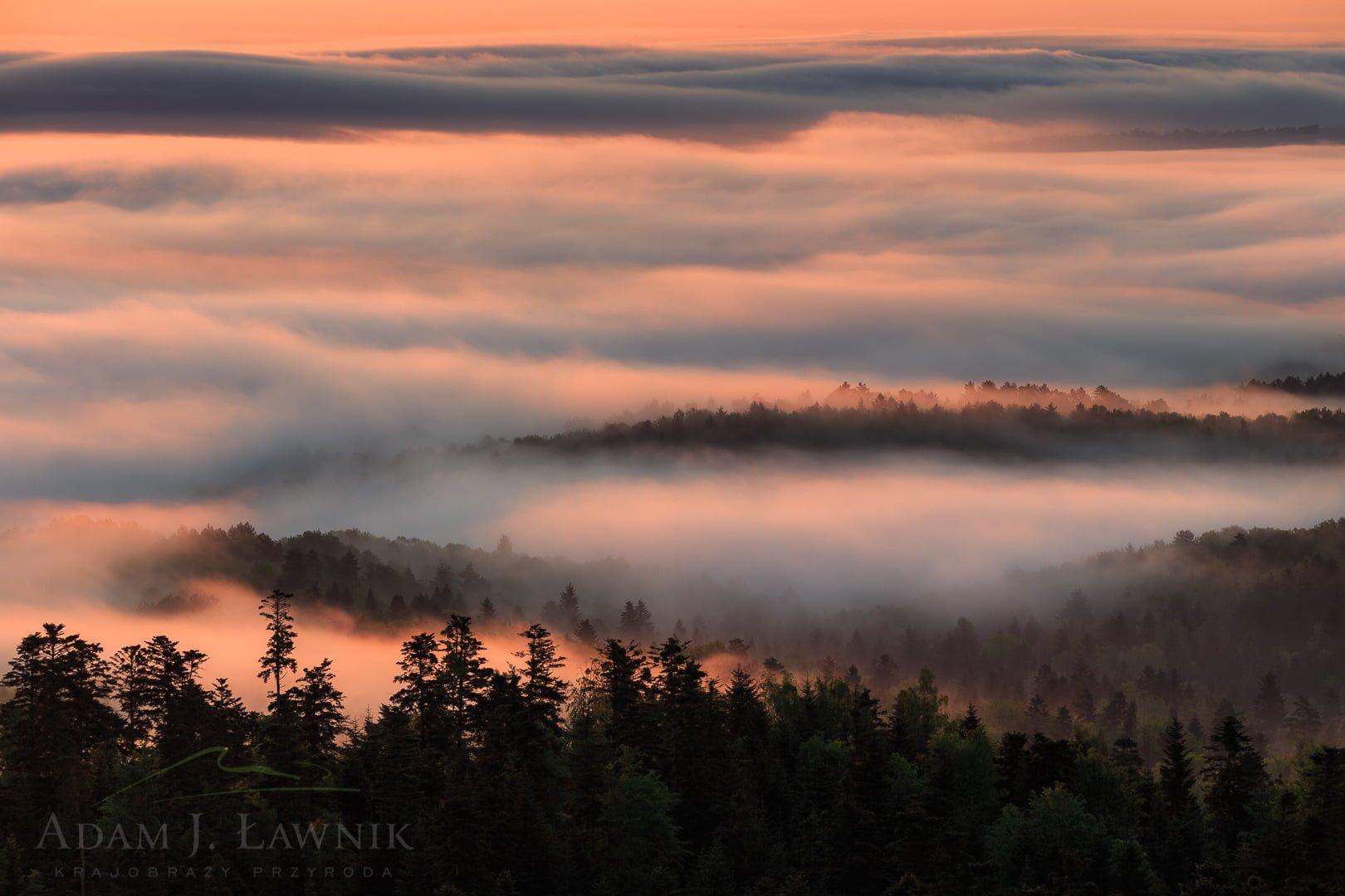 Mgły w Turnickim Parku Narodowym