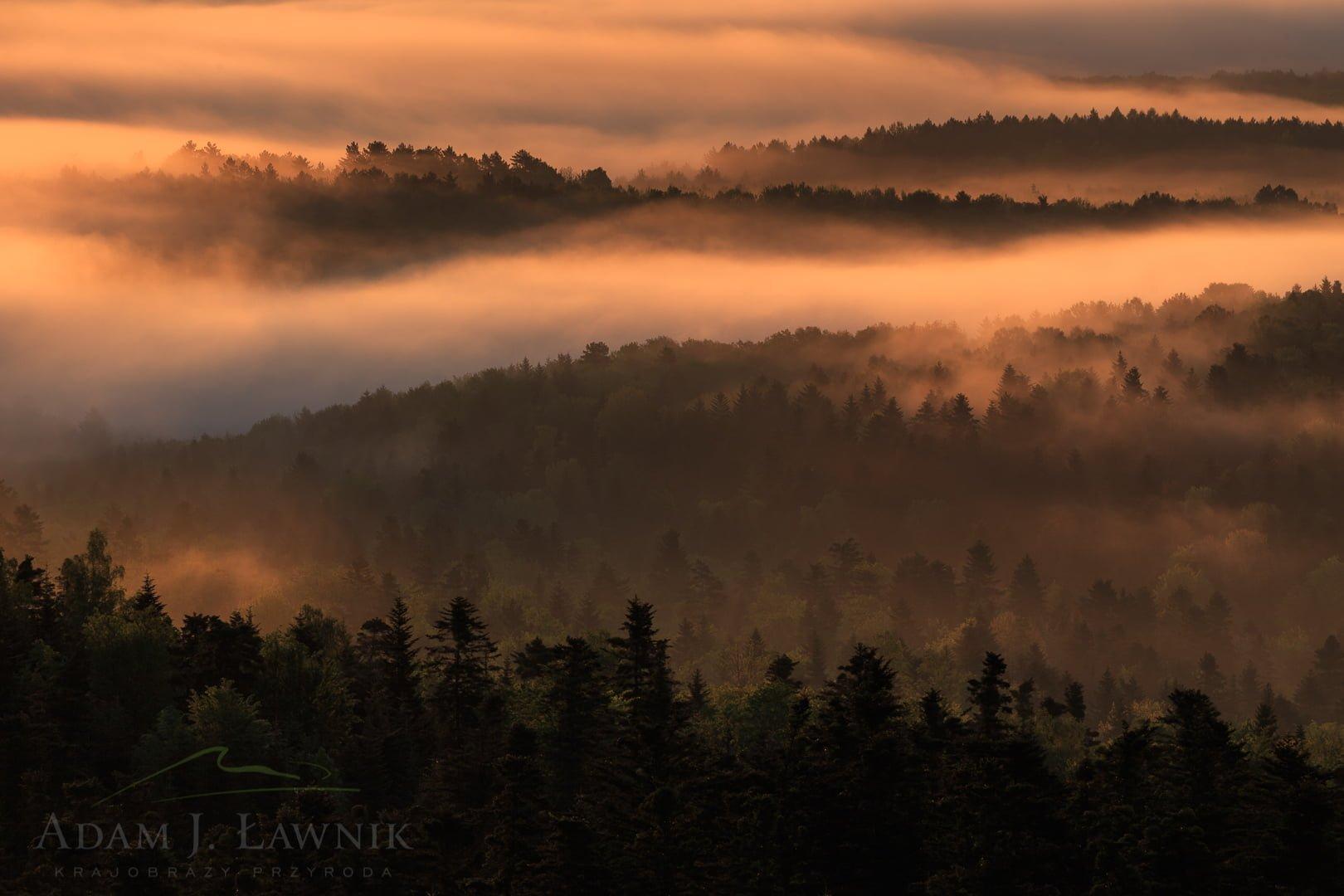 Doliny we mgle