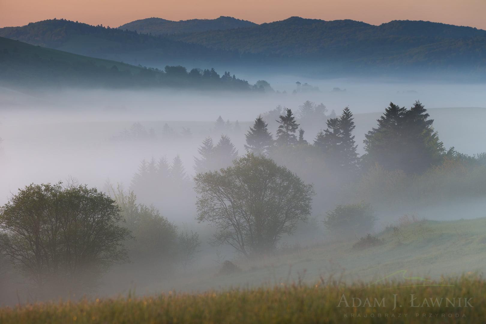 Turnica National Park, Poland 1605-00438C