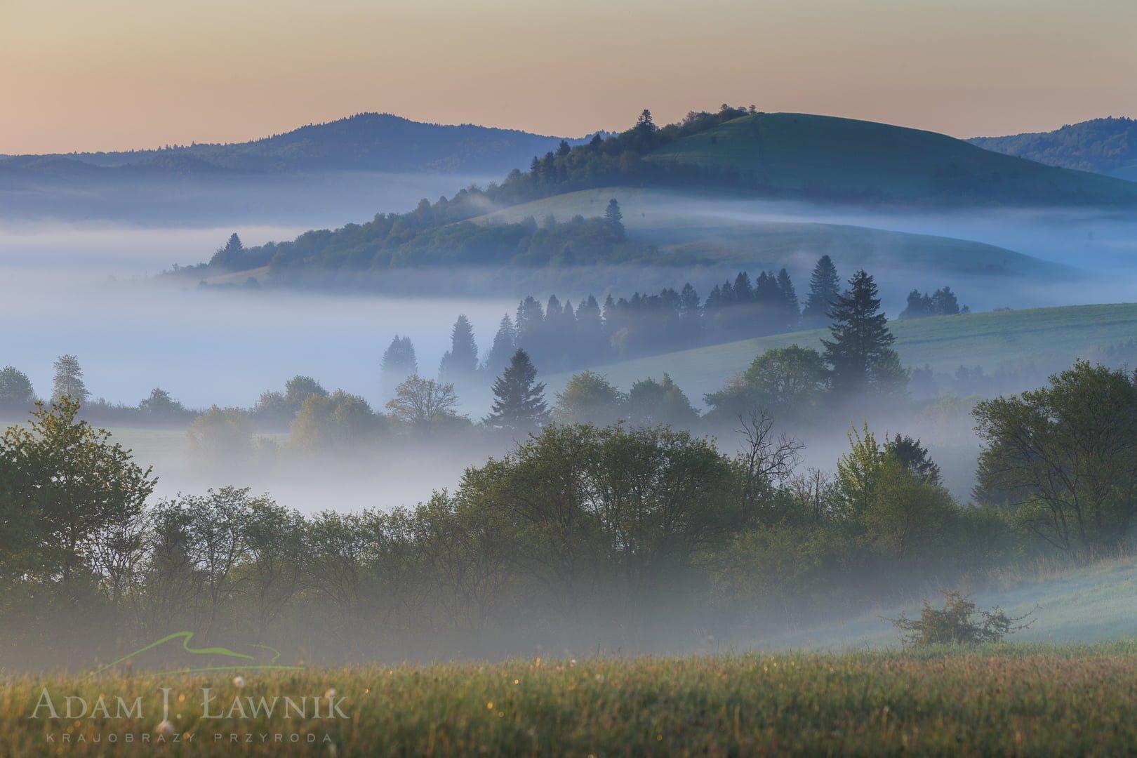 Poranne mgły w Turnickim Parku Narodowym
