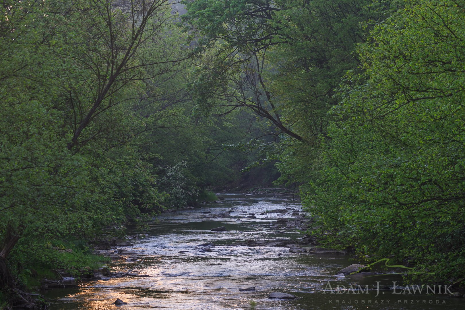 Rzeka Wiar w Turnickim Parku Narodowym