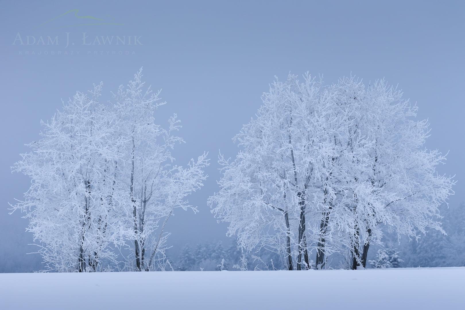 Turnica National Park, Poland 1701-00120C