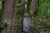 Turnica National Park, Poland 1709-00854C