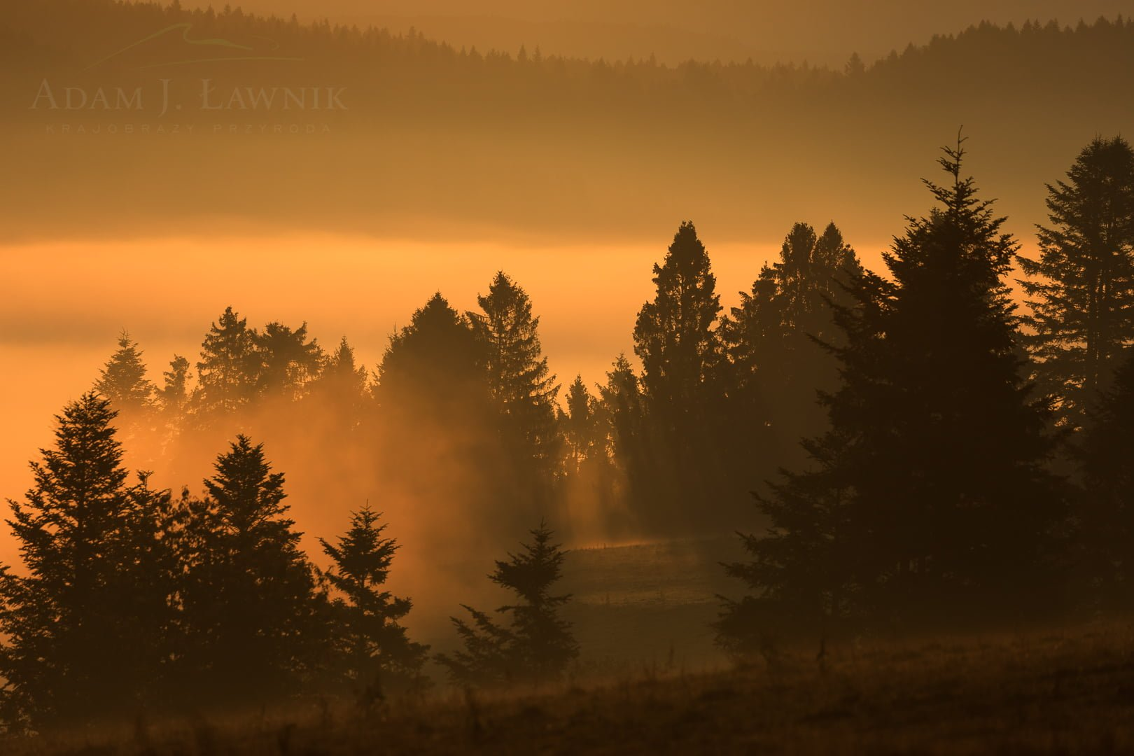 Turnica National Park, Poland 1709-00947C