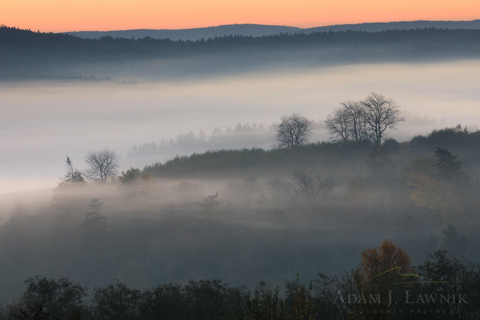 Poranne mgły późną jesienią