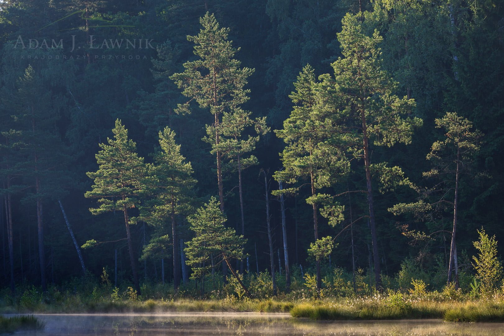 Wigry National Park, Poland 0807-00755C