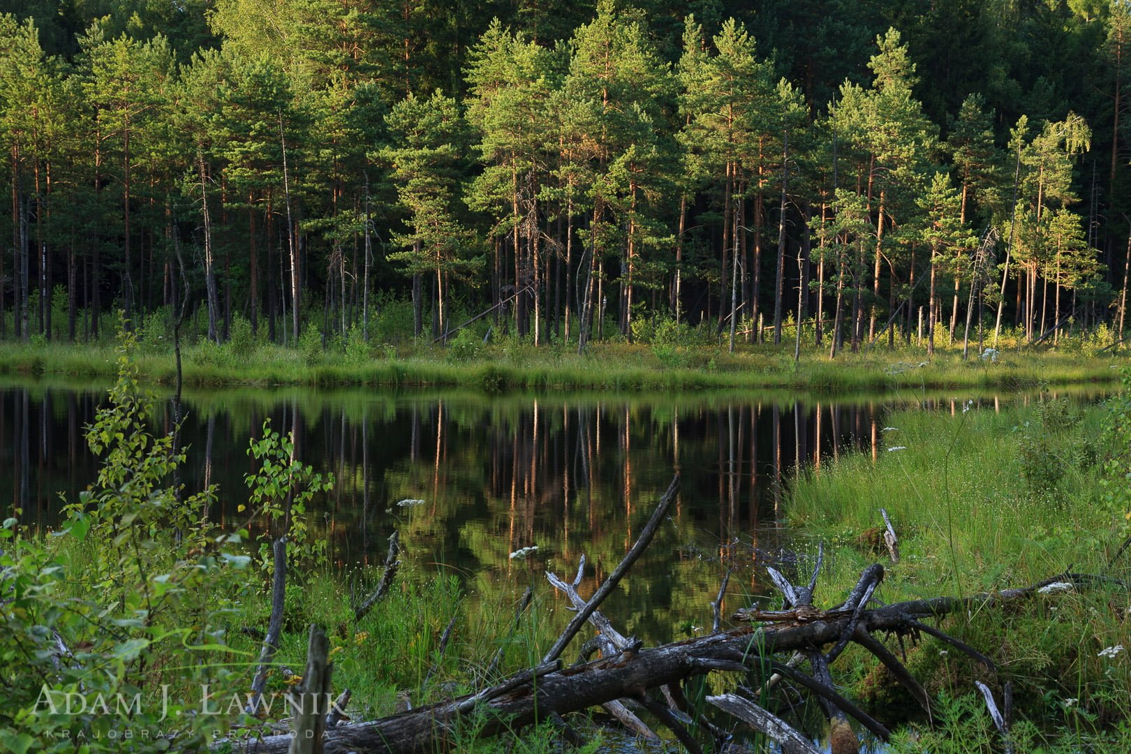 Wigry National Park, Poland 0807-00764C