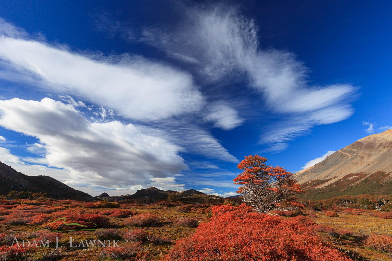 Patagonia, Argentina 1203-00642C