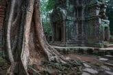 Cambodia 0908-00795C