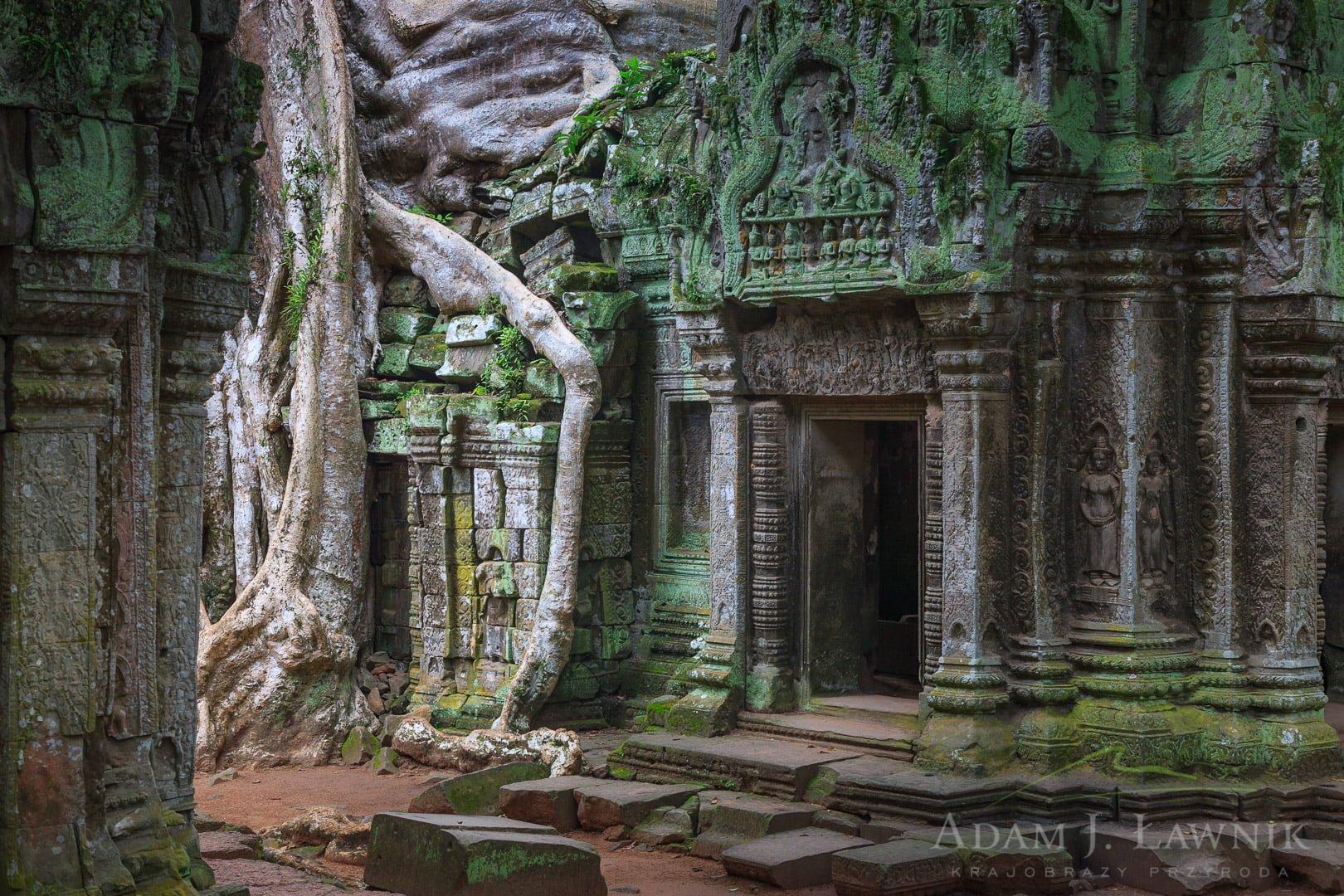 Cambodia 0908-00809C