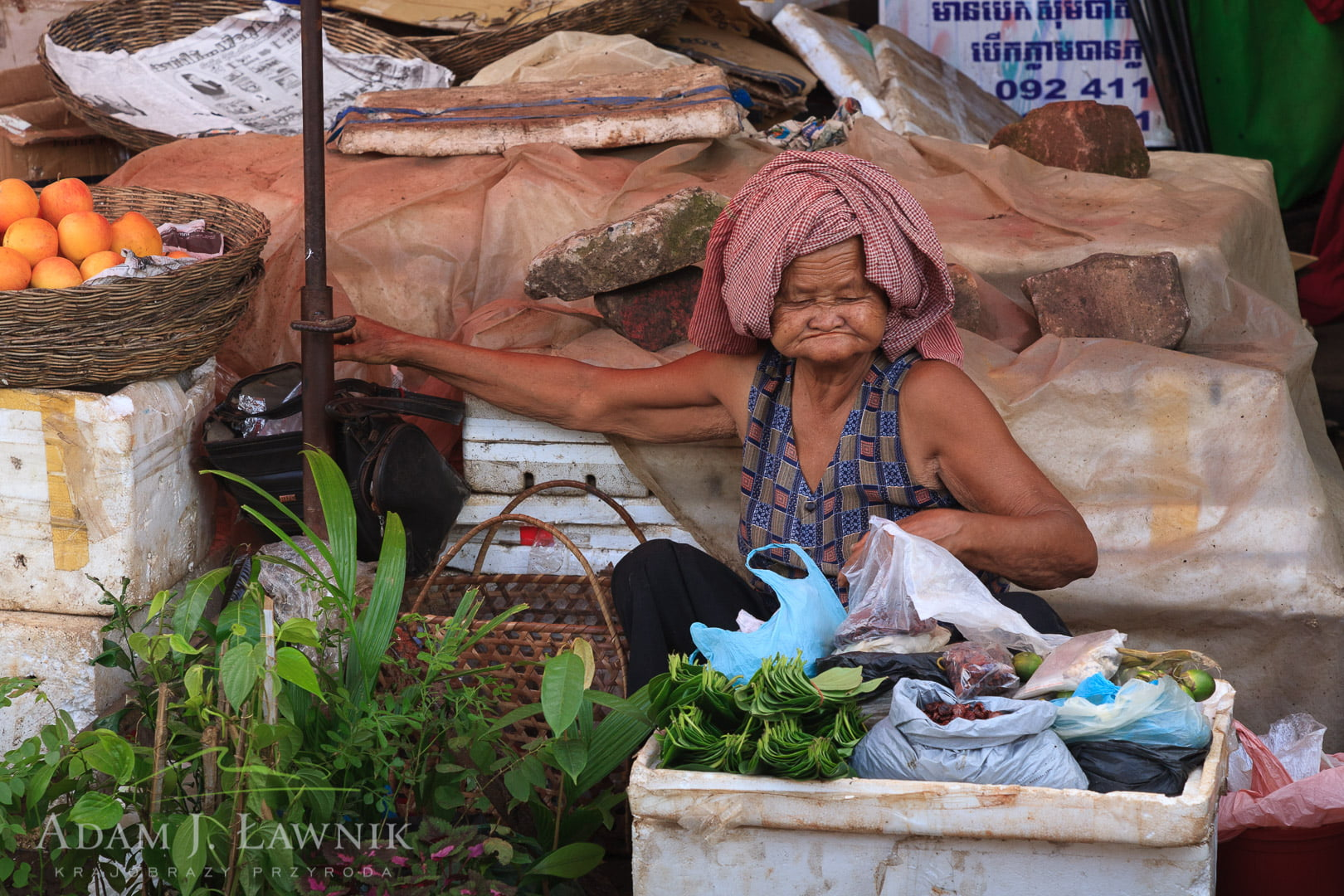 Cambodia 0908-00921C
