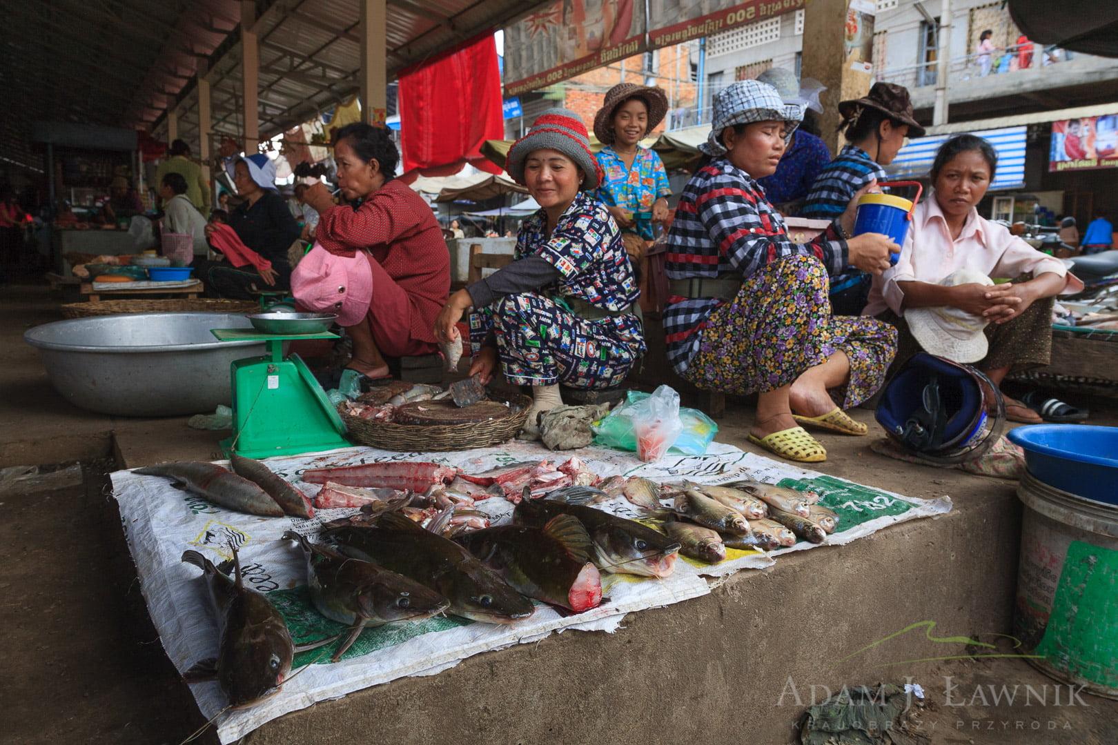 Cambodia 0908-00927C