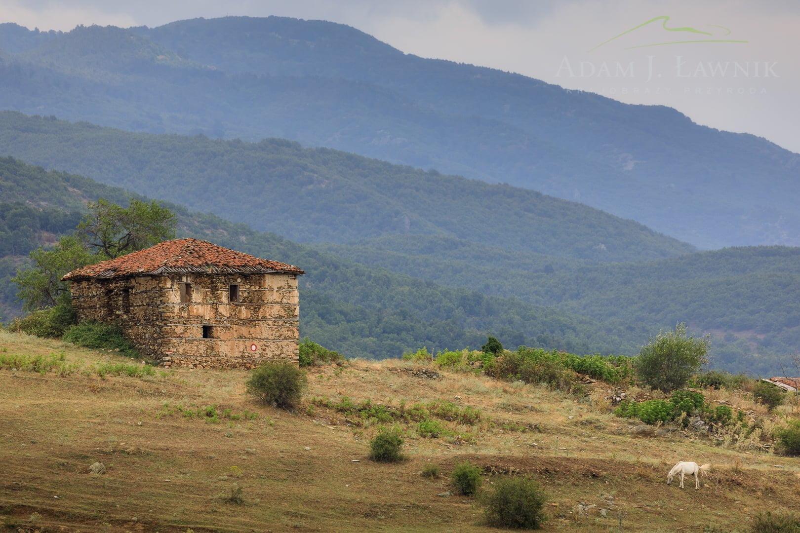 North Macedonia 1707-00696C