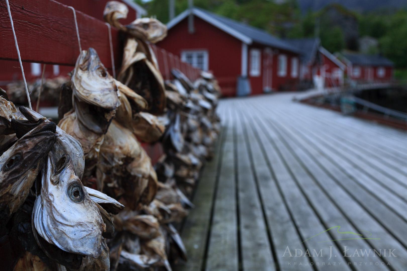 Norway 0607-01757C