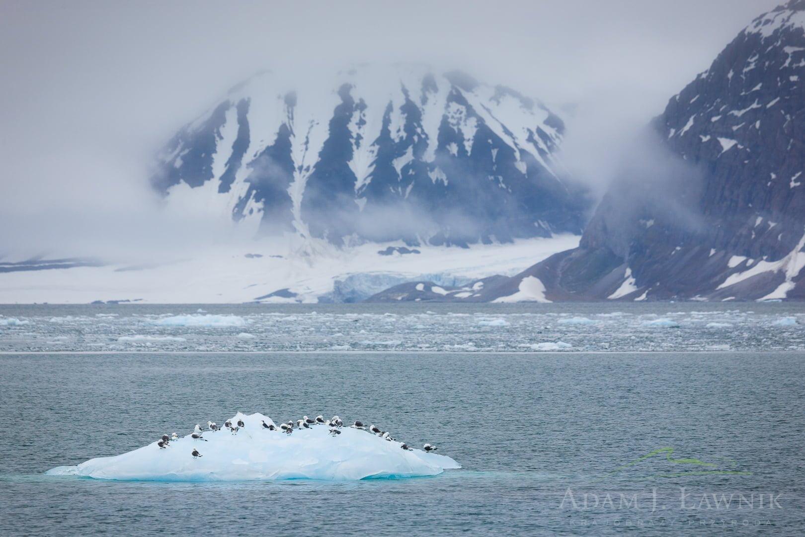 Spitsbergen, Arctic 0606-01032C