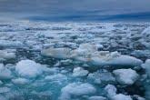 Spitsbergen, Arctic 0606-01195C