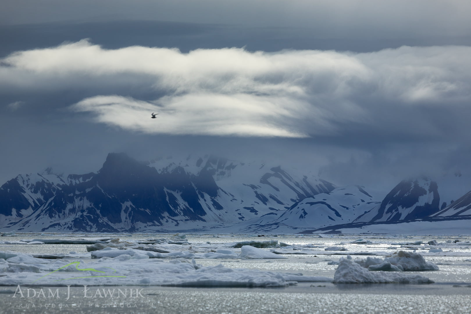 Spitsbergen, Arctic 0606-01234C
