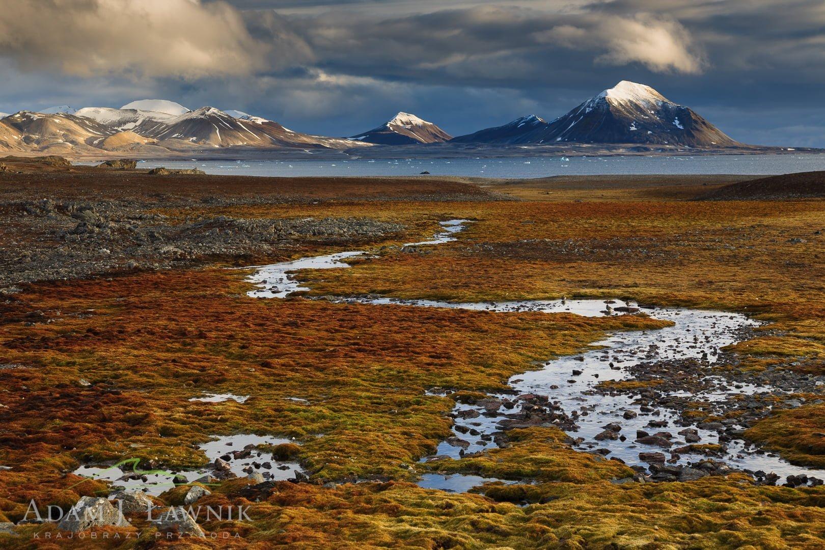 Spitsbergen, Arctic 0709-01526C