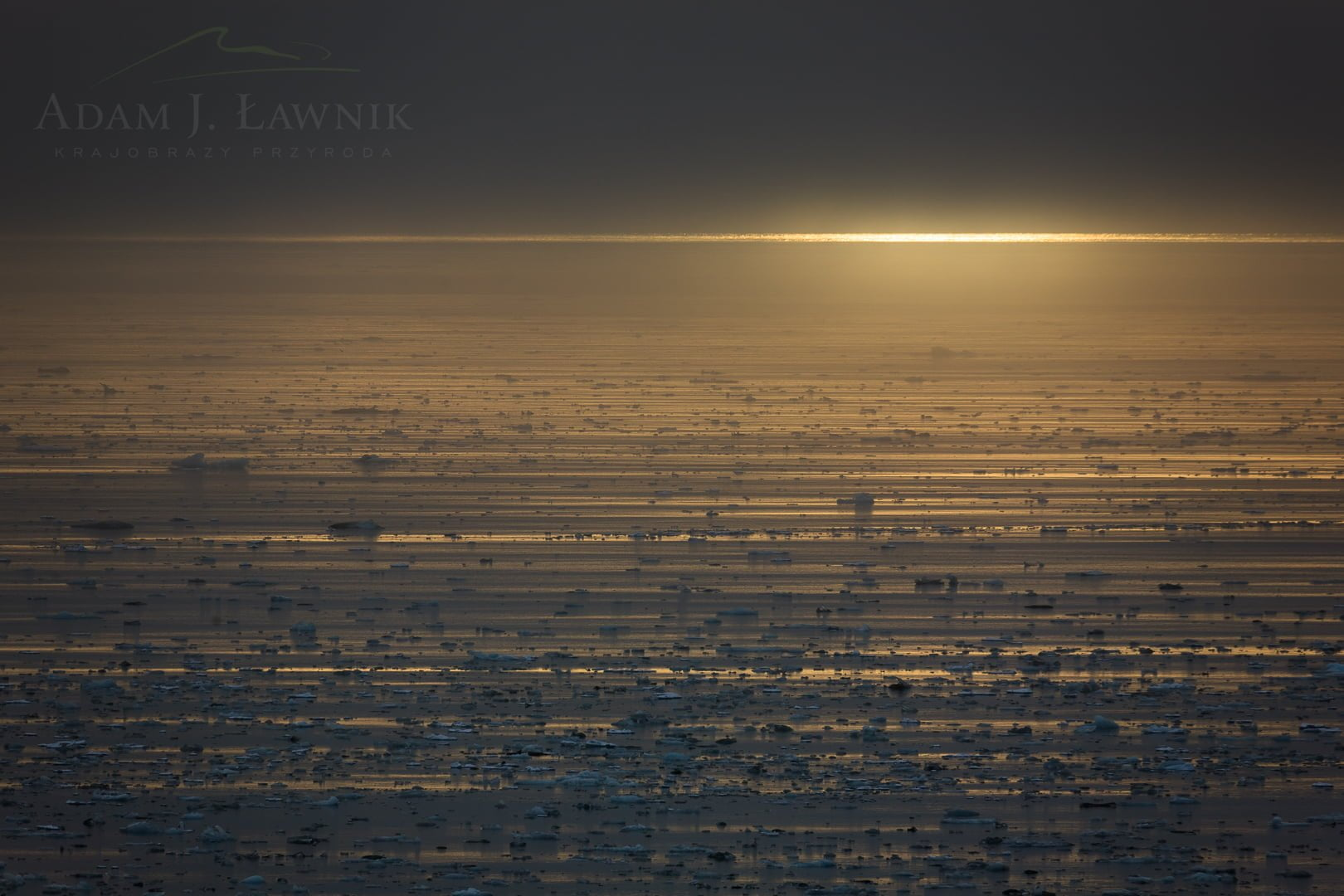 Spitsbergen, Arctic 0709-01746C