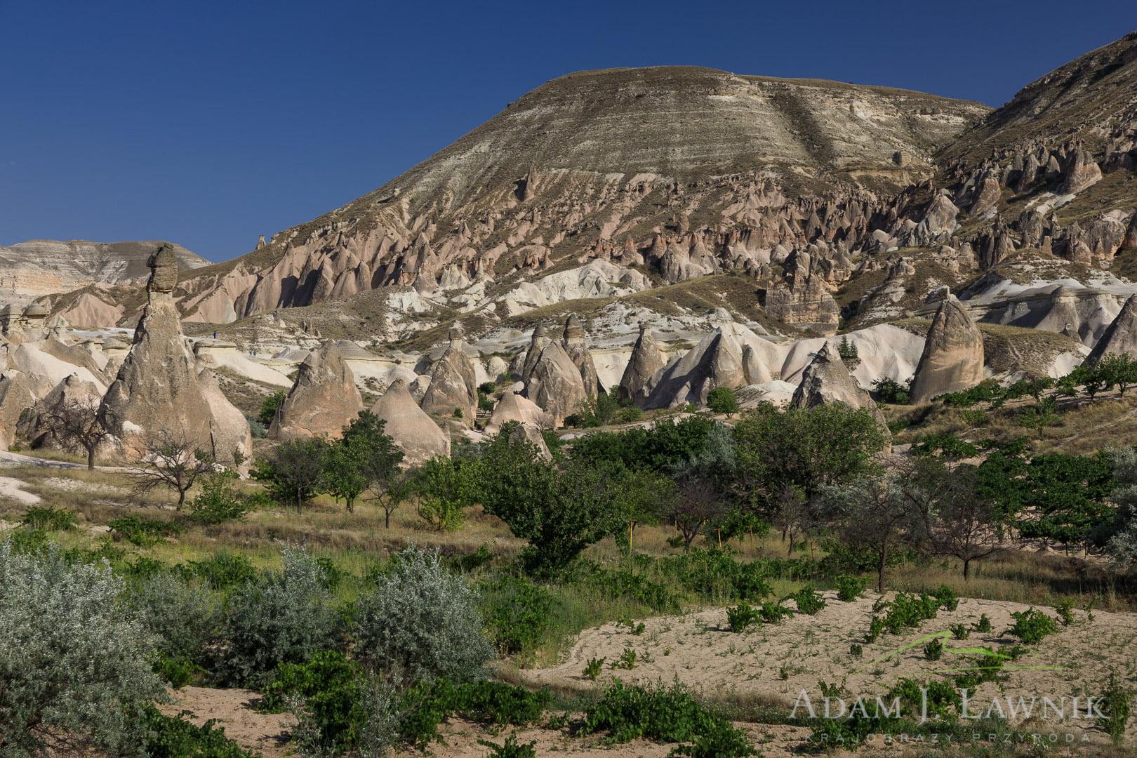 Pola uprawne w Kapadocji