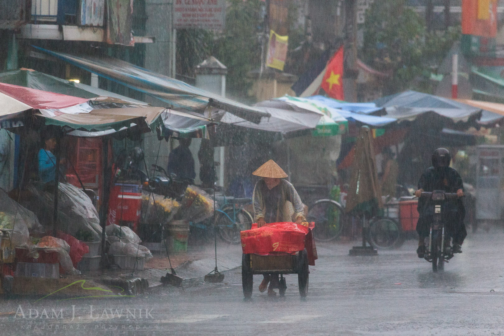 Vietnam 0909-01039C